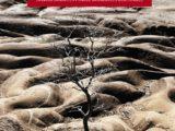 O clima em transe: Vulnerabilidade e adaptação da agricultura familiar